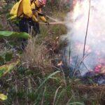 Esta tarde se registró incendio forestal en Finca San Pedro, Poptún, Petén. La Brigada de Respuesta a Incendios Forestales de CONRED -BRIF/GUA-, con el apoyo de cisterna de Bomberos Voluntarios, combatió el incendio que se encuentra 90% controlado.